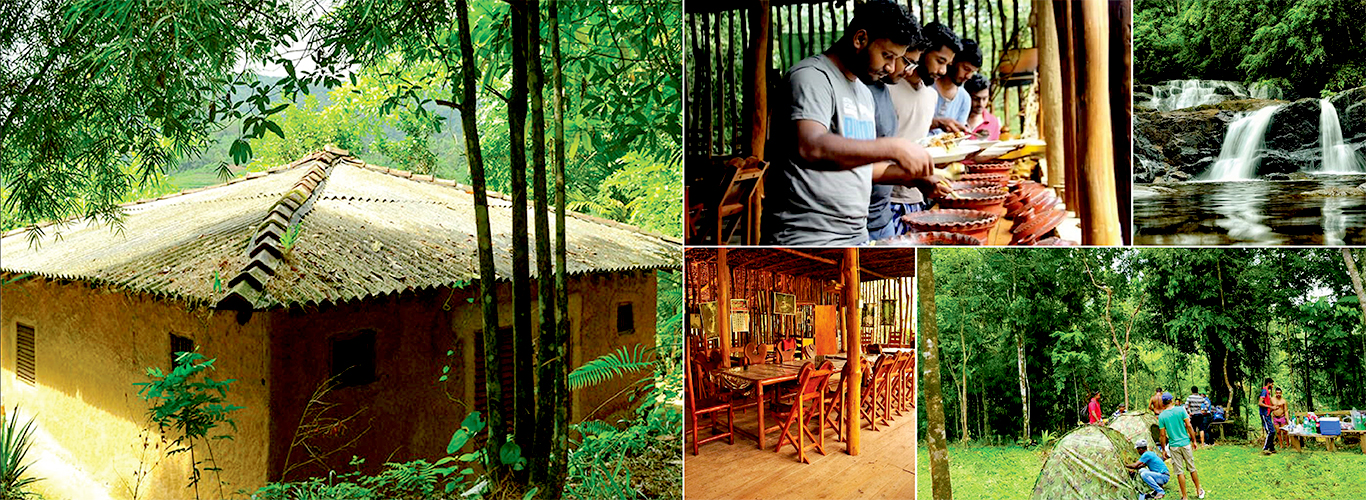 sri lanka sinharaja rain forest eco accomodation. Black Bedroom Furniture Sets. Home Design Ideas